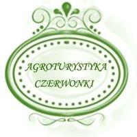 Agroturystyka Czerwonki