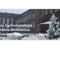 Gimnazjum Dwujęzyczne w Górze