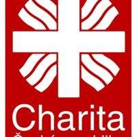 Oblastní charita Ústí nad Labem