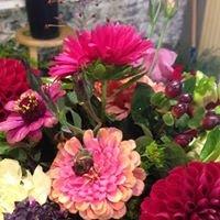 Hollyhocks Flowers & Designs