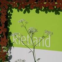 Rietland