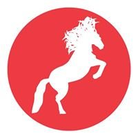 Wild Horse Casino & Hotel