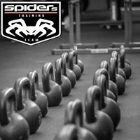 "Sieć Treningu ""Spiders Training Team"" Dębica"