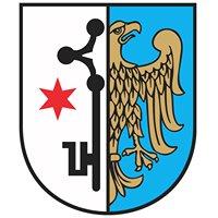Miasto i Gmina Toszek