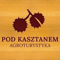 """Agroturystyka """"Pod Kasztanem"""""""