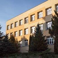 Biblioteka W Działoszynie