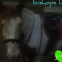 Bishops hall stables