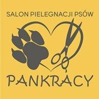 Pankracy Salon Pielęgnacji Psów