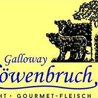 Galloway Löwenbruch