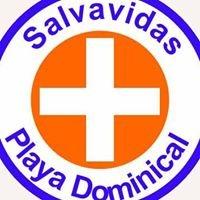 Dominical Lifeguards