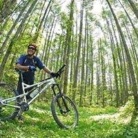 Yatsugatake Cycling