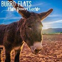 Burro Flats High Desert Lodge
