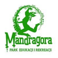 Park Edukacji i Rekreacji Mandragora Trzebiatów Gąbin