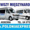 Polska Anglia Przewozy Miedzynarodowe