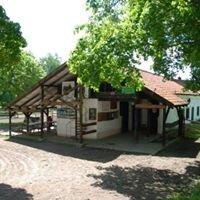 JUKS Galop w Smolajnach