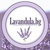 Lavandula.bg