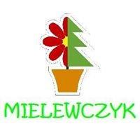 Gospodarstwo Ogrodnicze Marek Mielewczyk