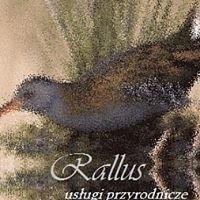 Rallus - usługi przyrodnicze