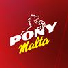 Pony Malta Ecuador