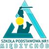SP1 Międzychód