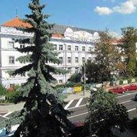 městská nemocnice Čáslav