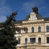 Základní Škola Martina Luthera