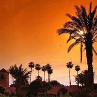S'installer et VIVRE à Marrakech