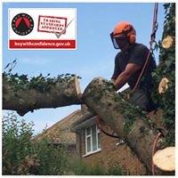 D Hodgson Tree & Landscape Services