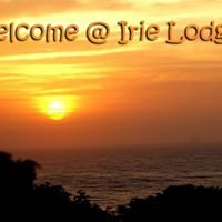 Irie Lodge Backpackers