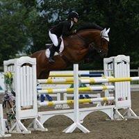 Uk Sport Horses Ltd