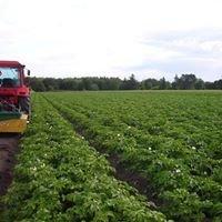 Læsø Økologi og Kærbo Økologiske Kartofler