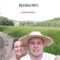 Bjorkowo