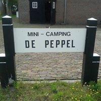 Mini-camping de Peppel