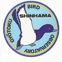 Gyotoku Bird Observatory