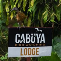 Cabuya Bird Watching