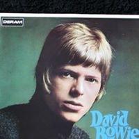 Vinyls RULE