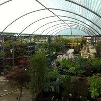 Redbridge Garden Centre