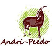 Andri-Peedo talu OÜ