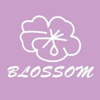 Blossom Clothing Cornwall