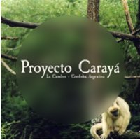 Proyecto Carayá