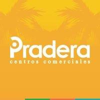 Pradera Puerto Barrios