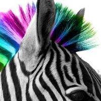 Zebra | Boje - Lakovi - Alati - Fasade - Tapete