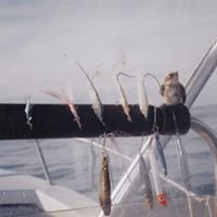 Hook'd Up Guide Service - Saltwater Fishing