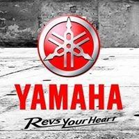 Yamaha  Quiche
