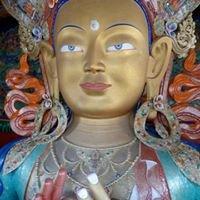 Deva Daru Yoga