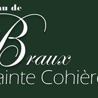 Chateau de Braux Sainte Cohière