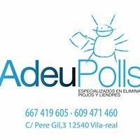 ADEU POLLS