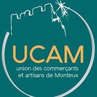 UCAM Monteux