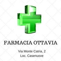 Farmacia Ottavia snc di Fiordoliva e Fioretti