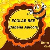Ecolab Queen Bee